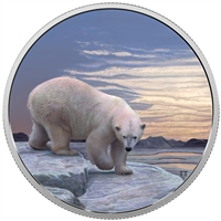 2018 Canada $30 Arctic Animals & the Northern Lights - Polar Bear Fine Silver (No Tax)