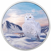 2018 Canada $30 Arctic Animals & Northern Lights - Snowy Owl Fine Silver (No Tax)