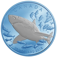 RDC 2018 Canada $30 The Great White Shark Fine Silver (No Tax) scuffed capsule