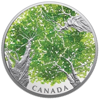 RDC 2018 $30 Canadian Canopy - The Maple Leaf Fine Silver Coin (No Tax) Impaired