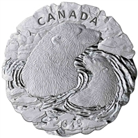 RDC 2019 Canada $50 Polar Bears: Mother and Cub Fine Silver (No Tax) Missing Sleeve