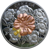 2019 Canada $50 The Bumble Bee & the Bloom Yellow & Rose Gold Plated Silver Coin