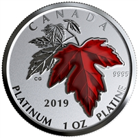 2019 Canada $300 Maple Leaf Forever Pure Platinum (No Tax)