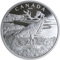 2019 Canada $20 Forget-Me-Not Fine Silver Coin (No Tax)
