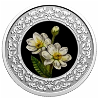 2021 $3 Floral Emblems of Canada - Northwest Territories - Mountain Avens (No Tax)