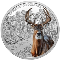 2021 Canada $30 Imposing Icons - White-Tailed Deer Fine Silver Coin (No Tax)
