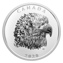 2020 Canada $25 Proud Bald Eagle Fine Silver Coin (TAX Exempt)