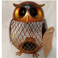 Money Bank: Owl with Bronze Metal w/bonus Large Cent