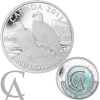 2013 Canada $300 Bald Eagle Platinum Coin (TAX Exempt) Worn Box