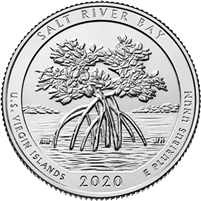2020 P Salt River Bay USA National Parks Quarter Brilliant Uncirculated (MS-63)
