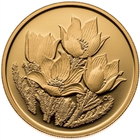 2010 Canada $350 Prairie Crocus Pure Gold Coin (TAX Exempt)