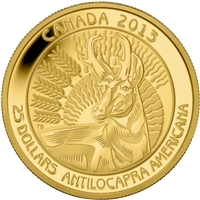 2013 Canada $25 Pronghorn Pure Gold Coin (TAX Exempt) - 123225