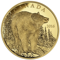 2016 Canada $350 The Bold Black Bear Pure Gold Coin (No Tax)