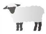 "Extra Large Sheep 15.5 x 12"" Stencil Set"