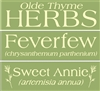 Olde Thyme Herbs Collection Feverfew, Sweet Annie Three Stencil Set