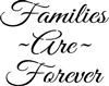 "Families Are Forever Script Font 10 x 8"" Stencil"