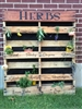 HERBS Basil, Oregano, Parsley, Mint, Cilantro, Chives, Rosemary Stencil Set