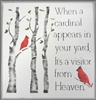 When a cardinal appears in your yard, 
