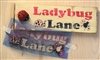 "Lady Bug Lane with Ladybug graphics 9.5 x 4"" Stencil"