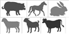 Large Farm Animal Goat, Pig, Cow, Horse, Bunny or Sheep (for 4H or FFA)