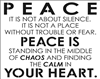 "PEACE IS NOT ABOUT SILENCE. IT IS NOT... CALM IN YOUR HEART 28 X 22"" Stencil"