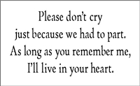 "Please Don't cry just because we had to part... 9 x 5.5"" Stencil"