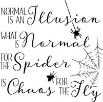"Normal Is An Illusion... with Spider , Fly & Web Graphics 12 x 12"" Stencil"