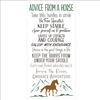 "Advice From A Horse Take life's hurdles... Embrace Adventure w/ Horse & Mountains 12 x 24"" Stencil"