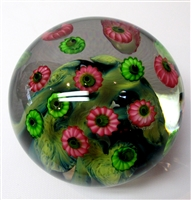 Daniel Lotton Clear Paperweight Multicolored Asters