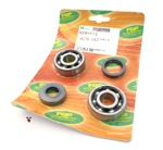 top performance bearings / seals for AM6 + aprilia RS50
