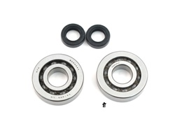 peugeot fox bearing n seal set