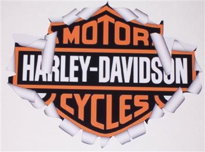 "Harley Davidson Motorcycle Skull RIp Motorcylce Decal Set Sticker Set 10/"" long"