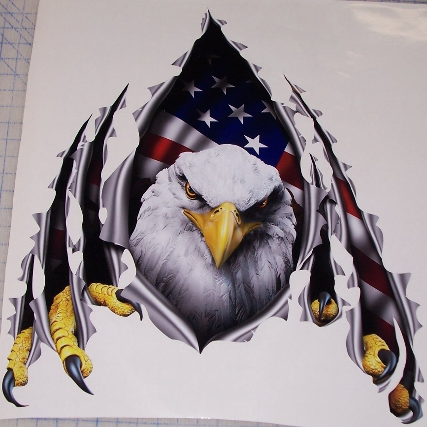 American Flag Eagle Rip Threw Trailer Rv Motorhome Camper Car Truck