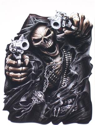 Assassin Grim Reaper Skull Full Color Graphic Window Decal