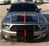 "Gray Mustang w/ Black & Red 10"" 2 Color Rally Stripe Set"