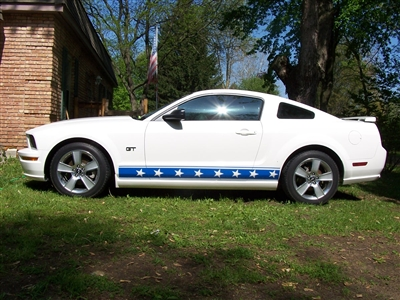 """10/"""" Plain Rally stripes Graphics Set Decals Fit Early Cobra Kit Car Mustang"""
