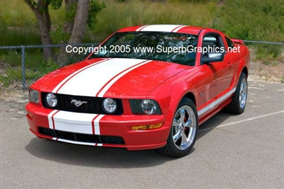2005 2009 Mustang 20 Quot Wide Single Rally Stripe New
