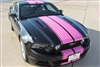 "2005 - 2014 Mustang 10"" Twin Rally Stripes"