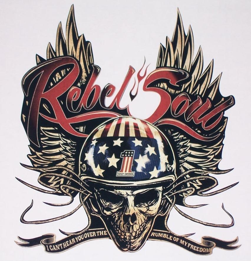 Harley davidson kid rock rebel soul printed full color window decal