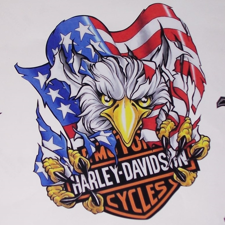 Harley American Flag Attack Eagle Full Color Graphic Window Decal Stick
