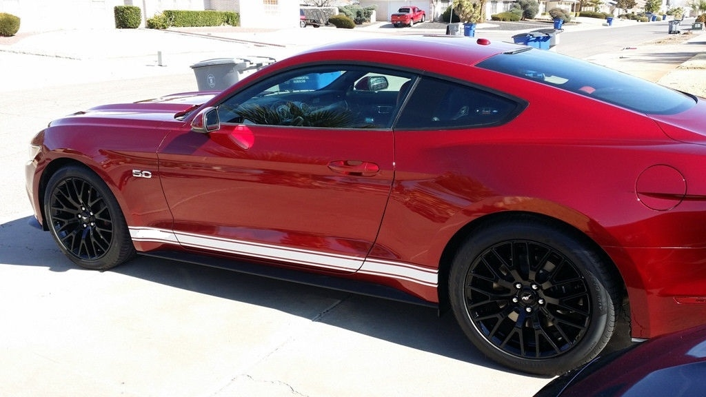 Mustang Decals And Stripes >> 2015 Mustang Plain Rocker stripes 1