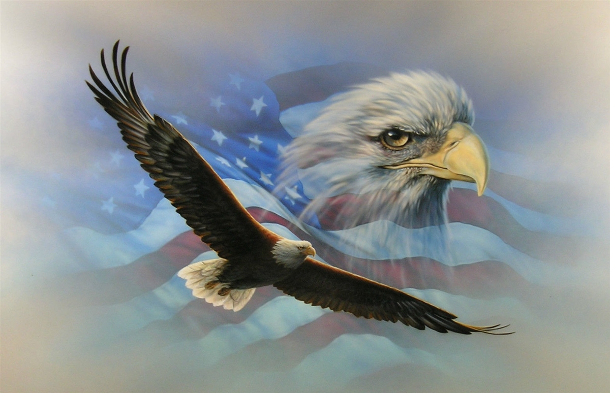 Flag Soaring Bald Eaglewall Rv Motorhome Or Trailer Graphic Decal