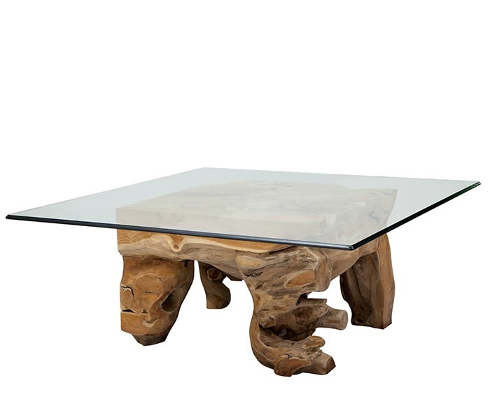 Root And Glass Coffee Table: Root Coffee Table Jati