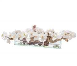 "Modern Floral Arrangement Glass and Stone White Orchids  24"" - *Special Order"