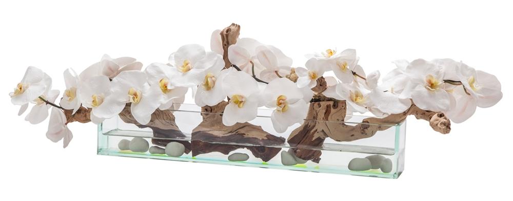 Modern Modern Floral Arrangement - Clear glass white orchids Rectangular
