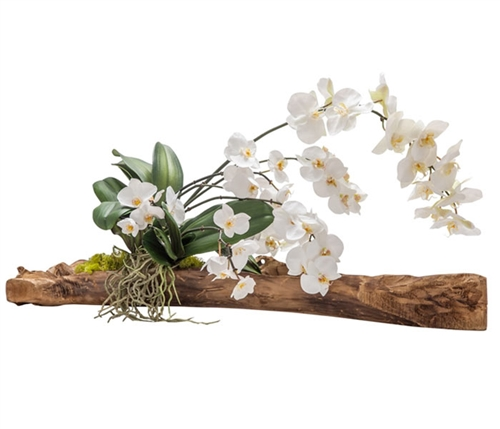 Modern Floral Arragement - White Orchid on vine