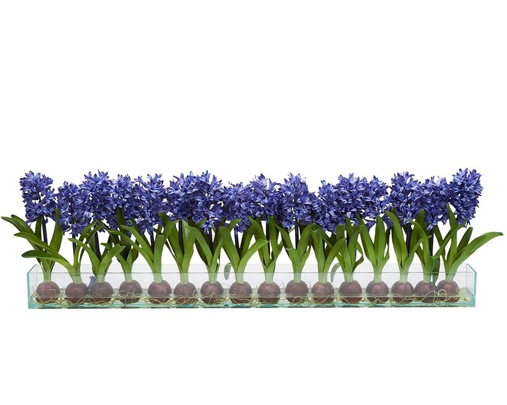 Floral Arrangements Modern Hyacinths On Casa Moderna Planter Blue Mh2g Com