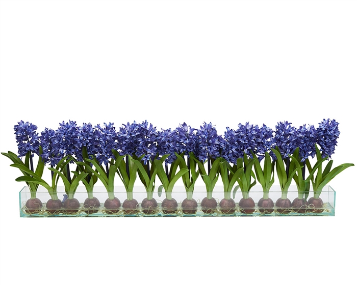 Modern Hyacinths on Casa Moderna Planter - BLUE