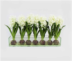 Modern Hyacinths on Casa Moderna Planter - WHITE 24""