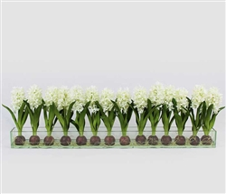 Modern Hyacinths on Casa Moderna Planter - WHITE 48""